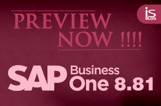 SAP Business One 8.81