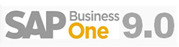 GL Account Determination in SAP Business One 9.0