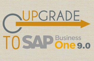 Upgrade to SAP Business One 9.0