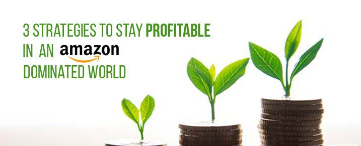 3-strategies-to-stay-profitable-in-an-Amazon-dominated-world