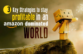 key-strategies-to-stay-profitable-in-amazon-dominated-world
