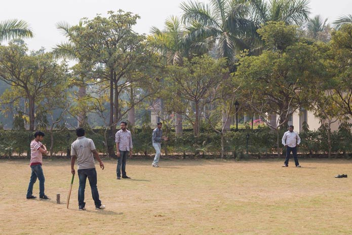Insync-Picnic-cricket-match