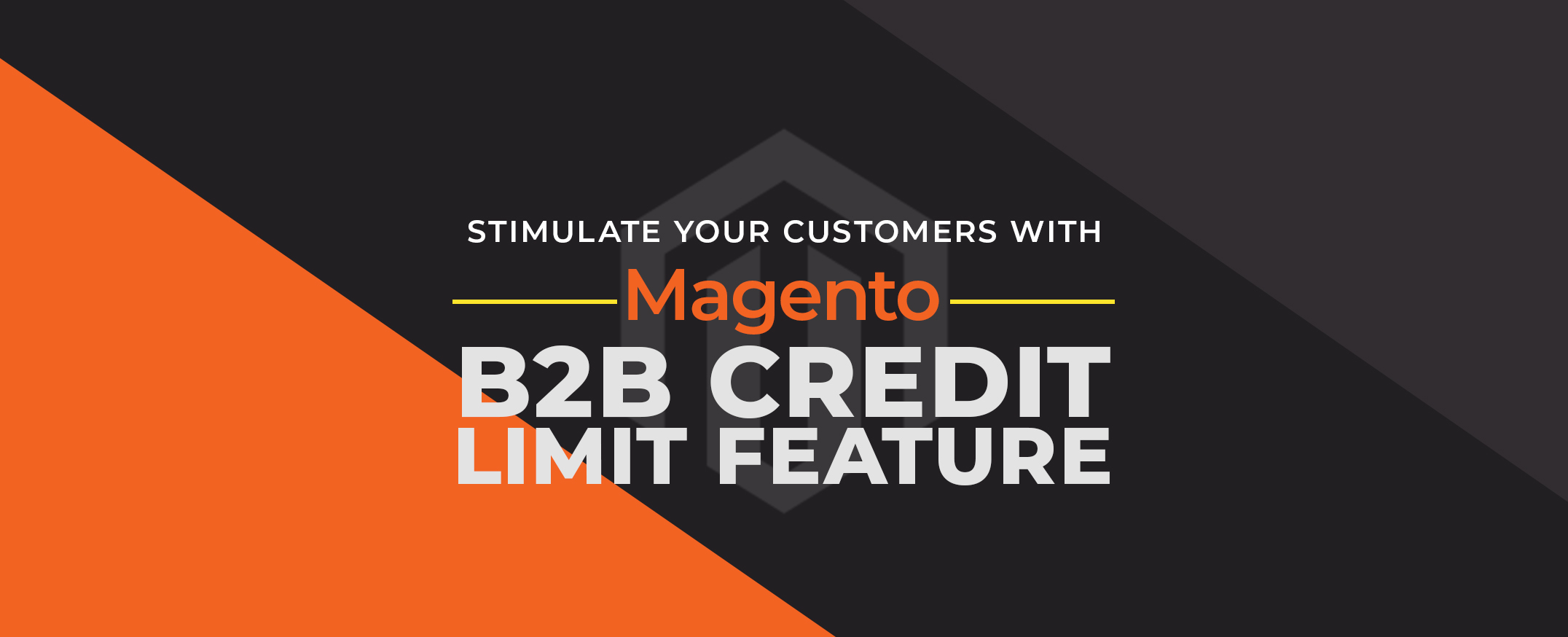 Stimulate-your-Customers-with-Magento-B2B-Credit-Limit-feature