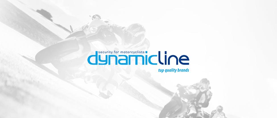 dynamicline-sl-insync-case study