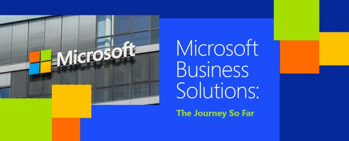 Microsoft Business Solutions: The Journey So Far