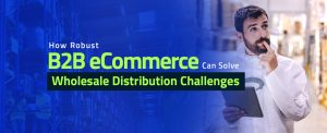 How Robust B2B eCommerce Can Solve Wholesale Distribution Challenges copy